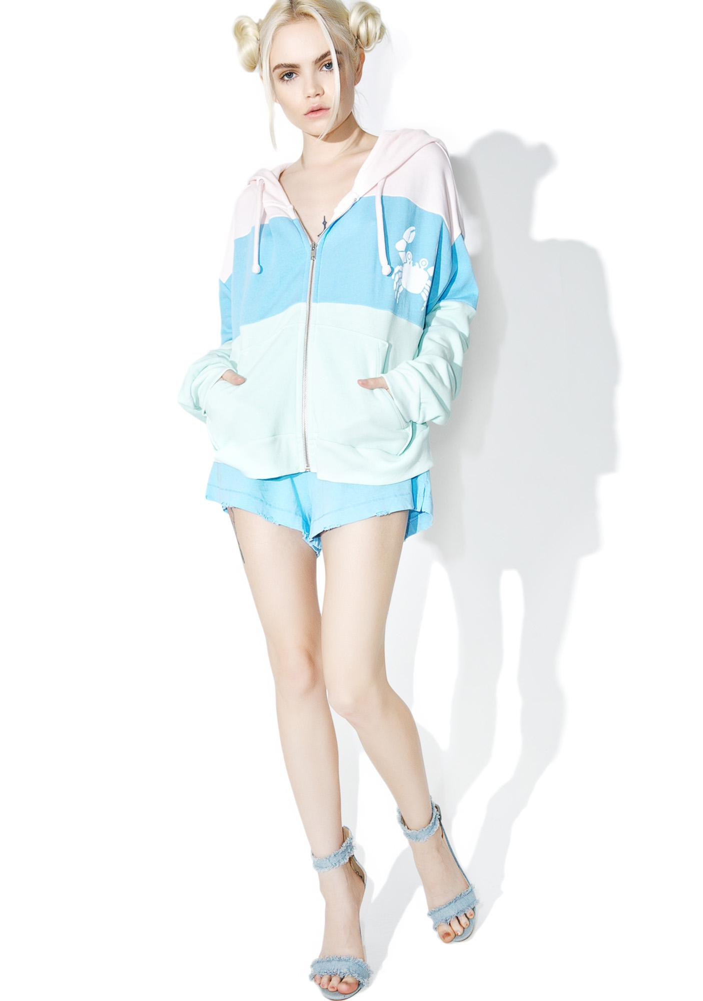 Wildfox Couture Sand Crab Stripe Hoodie
