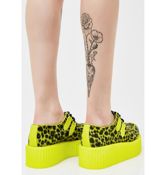 Demonia Wild Cheetah Creepers