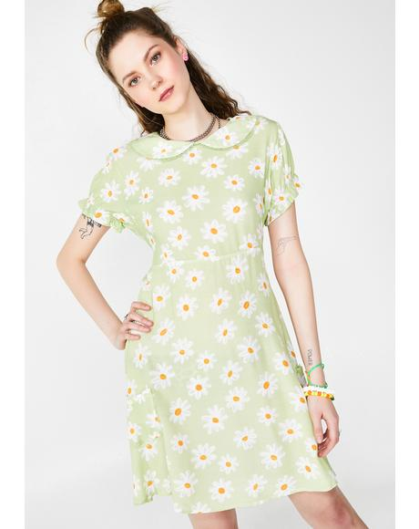 Sunny Skies Daisy Dress