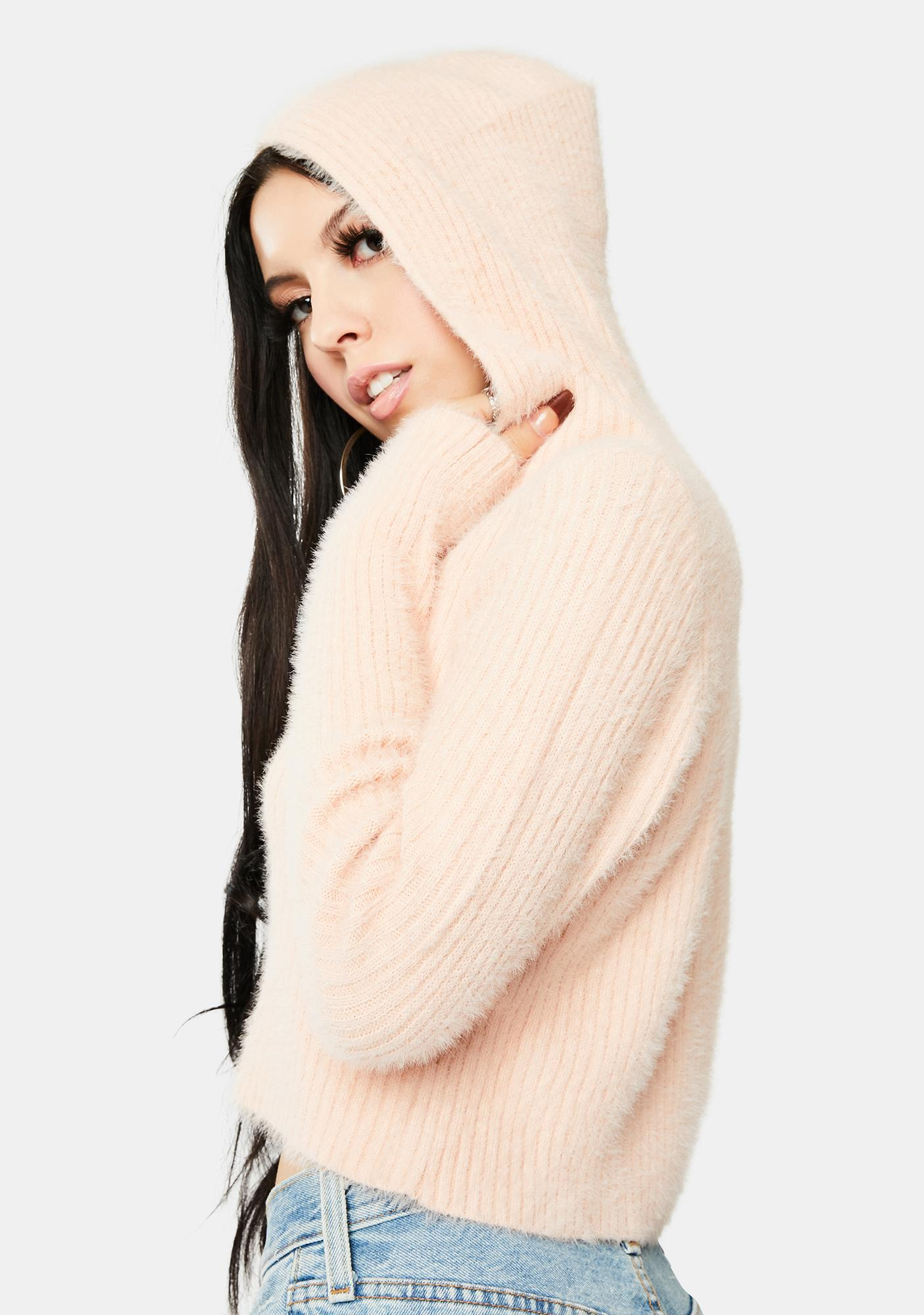 Bailey Rose Blush Hooded Sweater