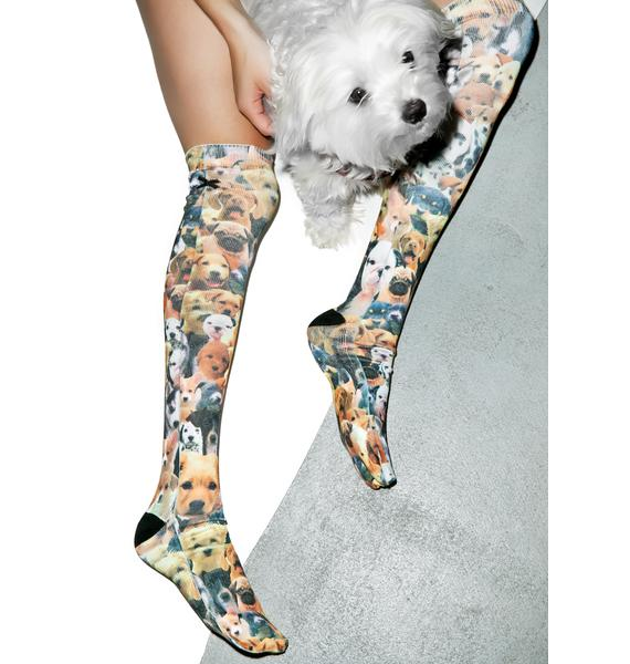 Odd Sox Puppies Knee High Socks