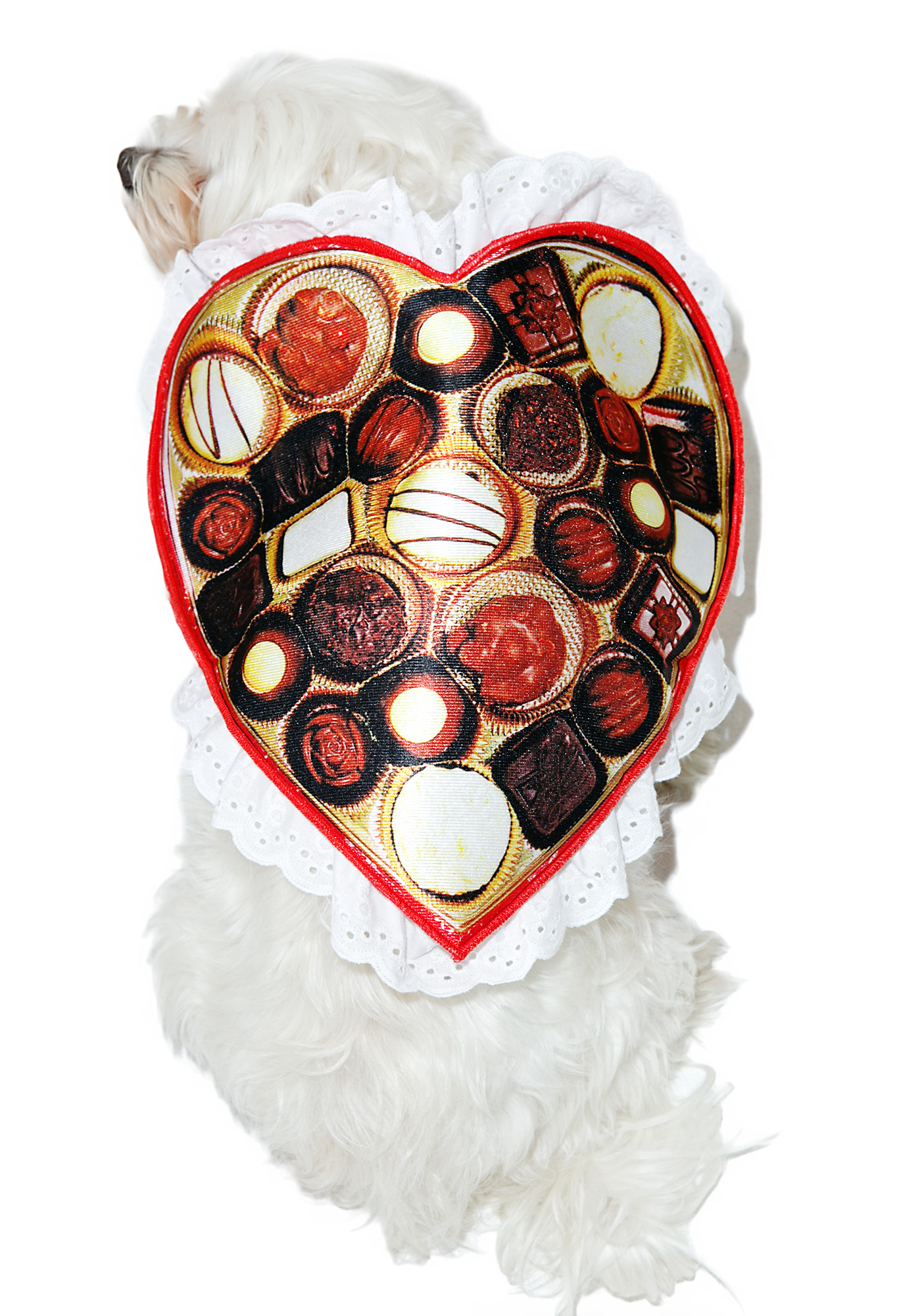 Valentines Day Dog Costume