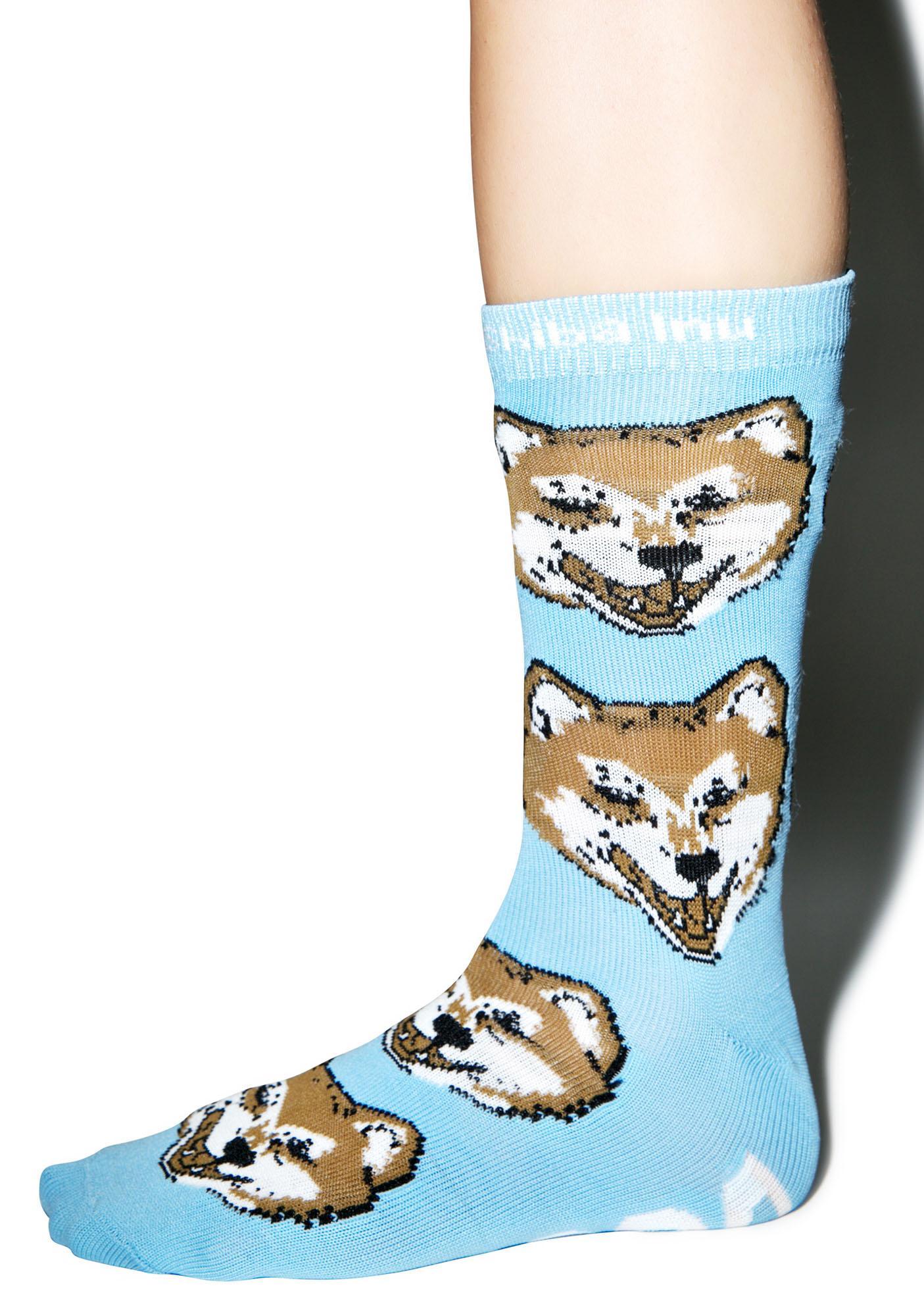 Shiba Inu Socks