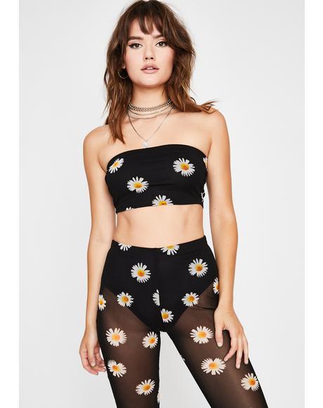 Wild Sunflower Pant Set