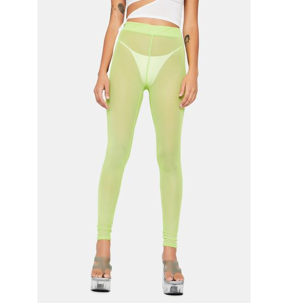 Lime Pure Naughtiness Sheer Leggings