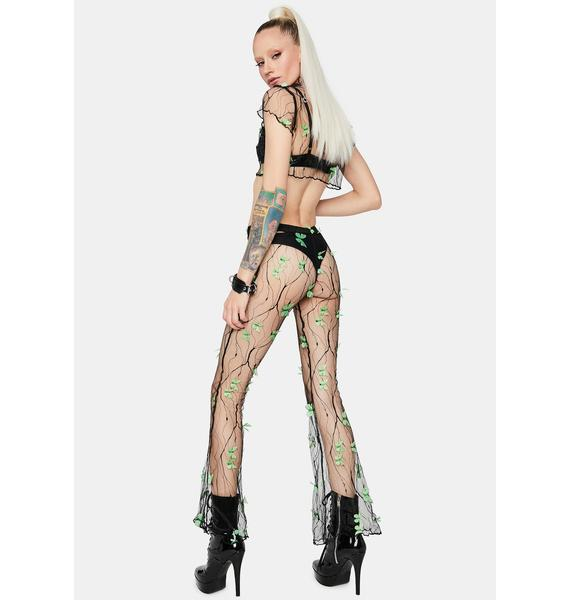 Lush Fairy Haven Sheer Butterfly Pants