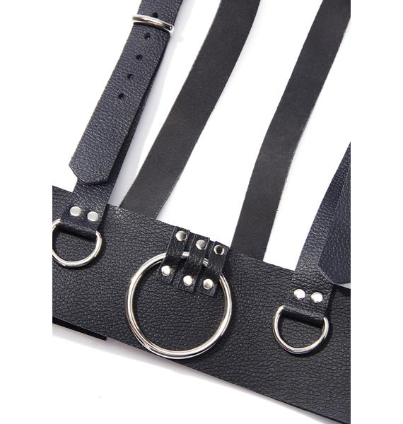 Master Of Mayhem Leather Harness