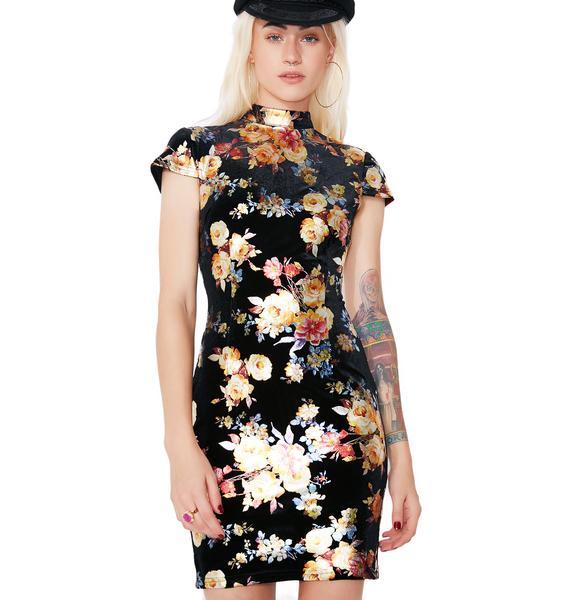 I AM GIA Aoki Dress