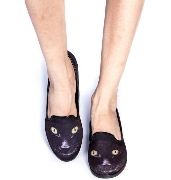 Y.R.U. Kitty Flats