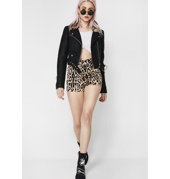 Tripp NYC Leopard High Waist Shorts