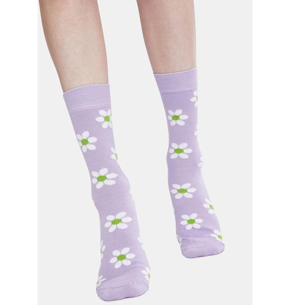 Minga Lilac Sweet Daisy Socks