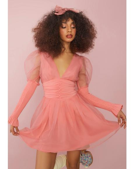 Talk About Forever Organza Mini Dress