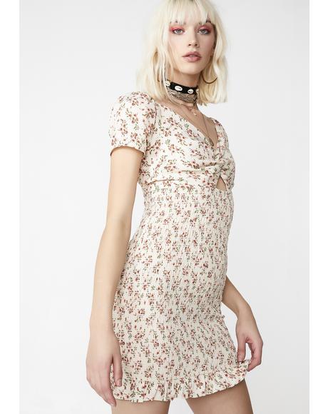 Honey Garden Floral Dress