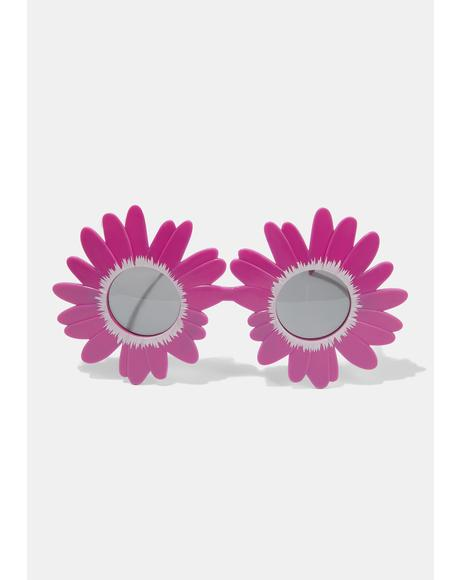 Fuchsia Late Bloomer Sunflower Sunglasses