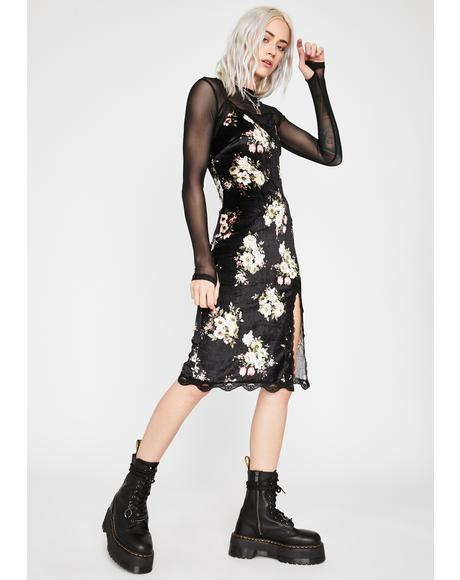 Dark Lily Read Into Me Velvet Dress