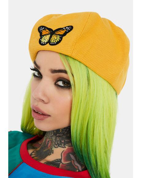 Sunshine A Lil Flighty Embroidered Beret