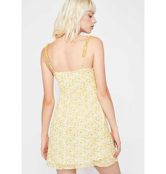 Daisy Delight Mini Dress